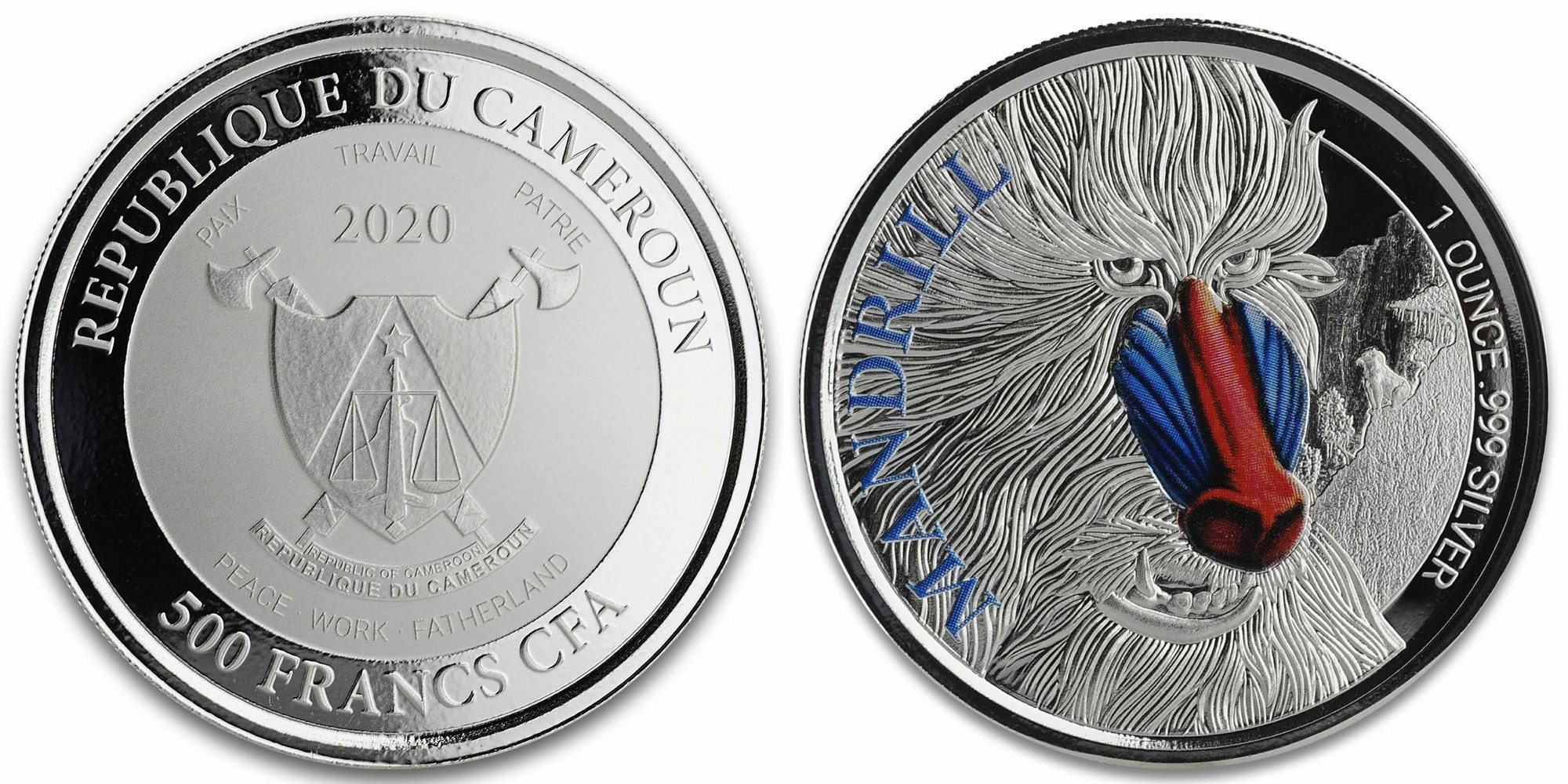 cameroun-2020-mandrill