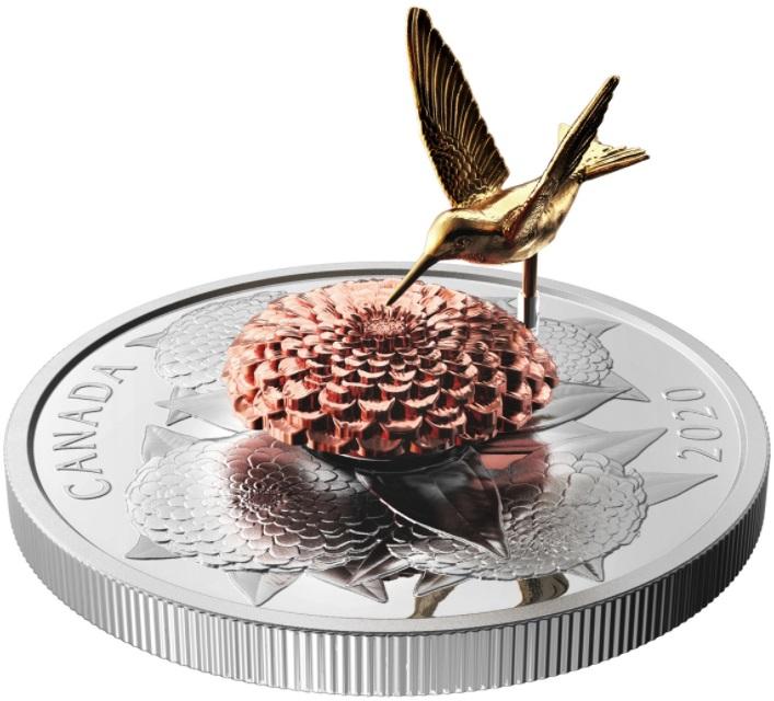 canada-2020-colibri-relief