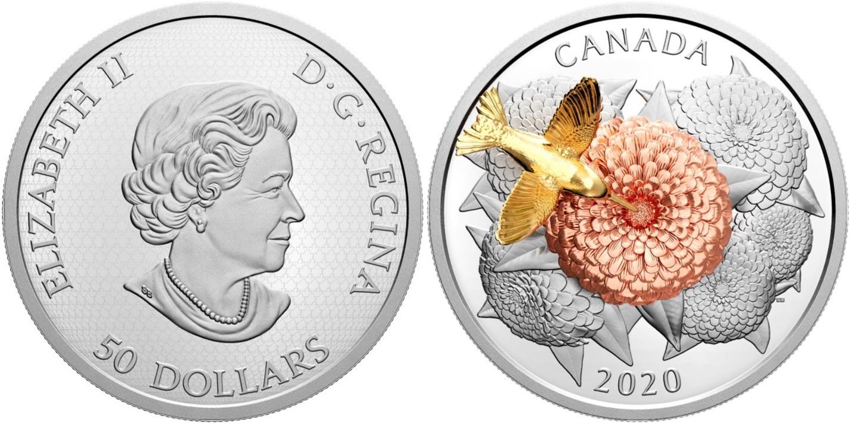 canada-2020-colibri