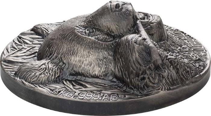 cote-divoire-2020-panda-kg-relief