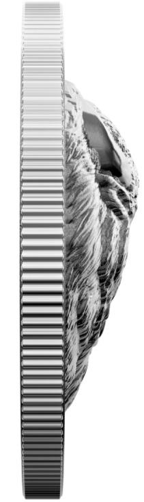 canada-2021-bison-audacieux-relief
