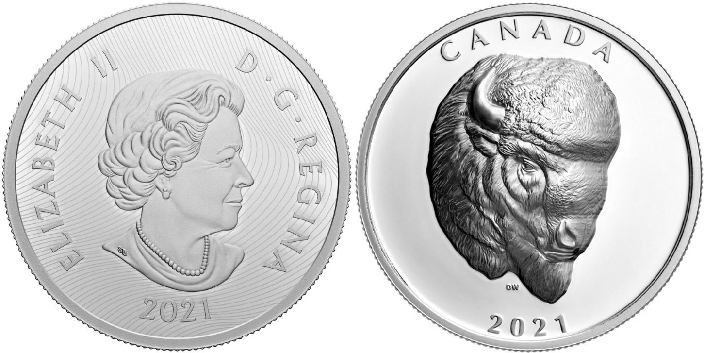 canada-2021-bison-audacieux