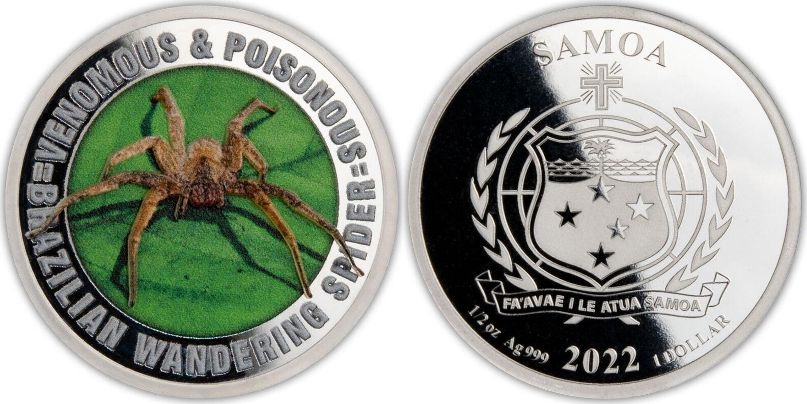 samoa-2022-poison-venimeux-araignee-bresilienne