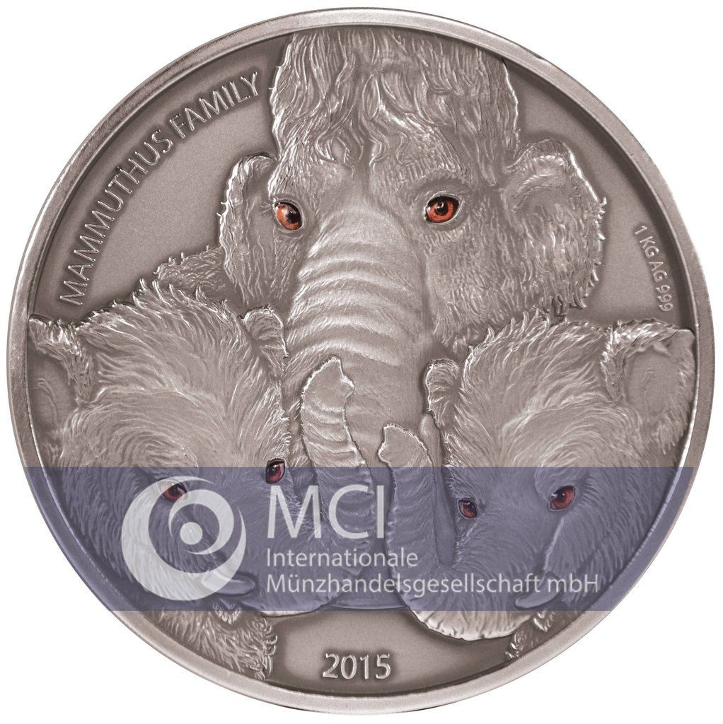 burkina faso 2015 famille mammouth kg