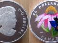 CANADA 20 DOLLARS 2013 - PAPILLON